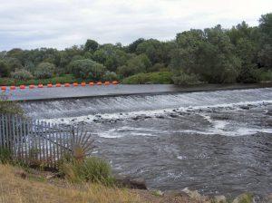 Bolina CSB1000 River Severn